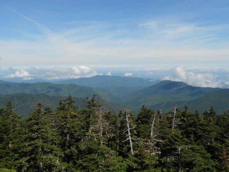 Looking out from Clingmans Dome, the highest point in Tennessee, the Smokies, and on the Appalachian Trail.
