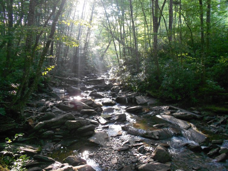 Along the Alum Cave Trail with Melissa on 8/14/2015.